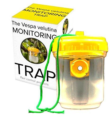 PCP, The Vespa Velutina monitoring trap - Asian hornet trap 2 x traps 1