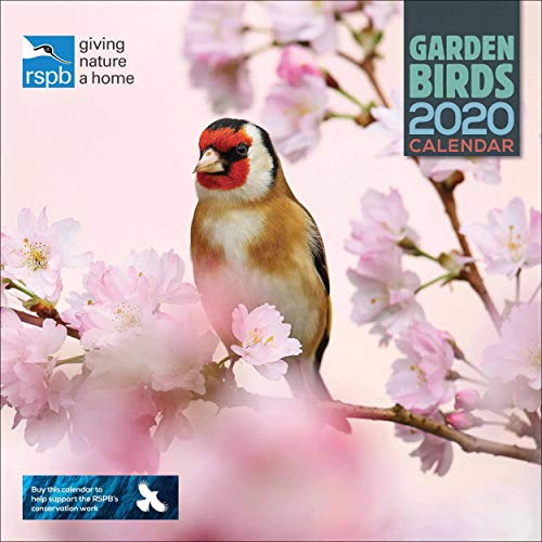 RSPB British Garden Birds Square Wall Calendar 2020