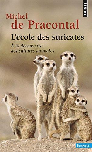 L'école des suricates. A la découverte des cultures animales