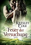Feuer der Versuchung (MacCarrick-Brothers, Band 1)