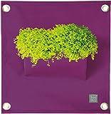 Wand-Pflanztasche Blumentopf einzelne Tasche für Innen und Außen - verschiedene Farben erhältlich (Violett)