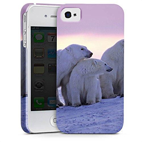 Apple iPhone 7 Tasche Hülle Flip Case Eisbär Eisbären Bär Premium Case glänzend