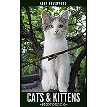 Cats & Kittens: Photobook (English Edition)