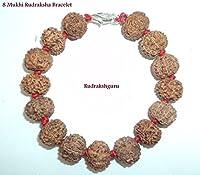 8 Mukhi Rudraksha Bracelet / Ketu Bracelet / Ganesha Bracelet - Java