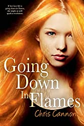 Going Down in Flames