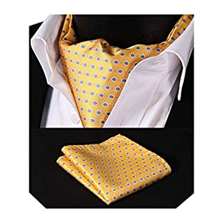 HISDERN Men's Floral Jacquard Woven Ascot Set One Size Yellow/Blue