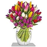 Immerschön - Tulip - Maxi-Blumen-Grußkarte