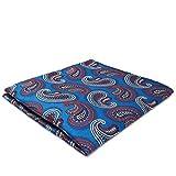 Shlax & Wing Pañuelo de bolsillo cuadrado azul Pañuelo Pañuelo de seda Pañuelo Moda