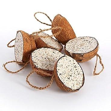 Pet Supply Uk Wild Bird Filled Suet Coconuts 20 Pack