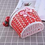 Clispeed-Bicicletta-Scooter-Basket-Bambini-Bike-Basket-Plastica-Knitted-Bow-Knot-Anteriore-Borsa-Fatta-a-Mano-Piccolo-Cestino-Rosso-Campanello-di-Colore-campanella
