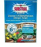 SCOTTS Substral Osmocote Zimmer & Kübelpflanzen...