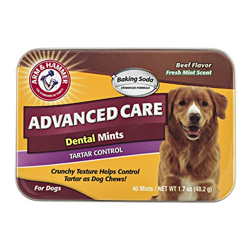 Company of Animals Arm & Hammer Advanced Care Tartar Control Dental Mints – Beef Flavoured, 40 mints