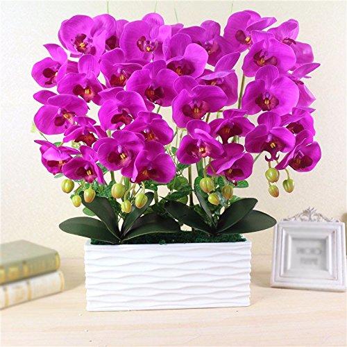 GBHNJ Artificial Flower GBHNJ Faux Fleurs Cadeau Table Basse Gala Simulation Plantes En Pot Decoration Plant Phalaenopsis Rose Rouge Pots À Fleurs Rectangulaire