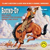 Round Up (Mehrkanal)