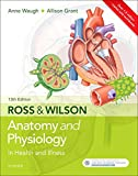 Physiology Books - Best Reviews Guide