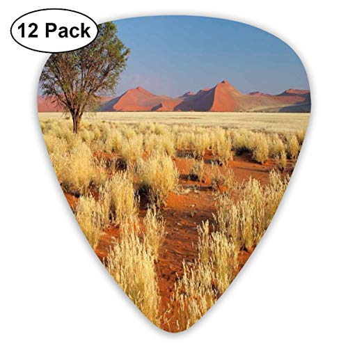 Guitar Picks - Abstract Art Colorful Designs,Acacia Tree Desert Sossusvlei Namibia Southern Africa Photo,Unique Guitar Gift,For Bass Electric & Acoustic Guitars-12 Pack