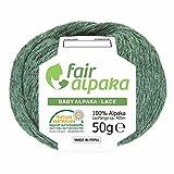 100% Alpakawolle in 50+ Farben (kratzfrei) - 200g Set (4 x 50g) - weiche Baby Alpaka Wolle zum Stricken & Häkeln in 6 Garnstärken by Hansa-Farm - Smaragd Heather (Grün)