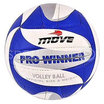 Pelota Pelotas Voleibol...