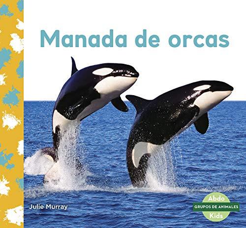 Manada de Orcas (Orca Whale Pod) (Grupos De Animales / Animal Groups)