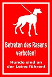 Schild - Betreten des Rasens verboten - Hunde sind an der Leine zu führen – 45x30cm | stabile 3mm starke PVC Hartschaumplatte – S00216-007-D +++ in 15 Varianten erhältlich