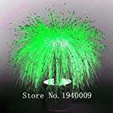 200 pcs / sac, semences fibre optique herbe, 6 couleurs Isolepis cernua graines, mini graines bonsaï herbe plante en pot pour la maison et le jardin