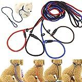 rokoo Leine für Haustiere Seil Nylon verstellbar Training Keilriemen, Blei Strom Grand mittel Kleine Hunde Traction Geschirr Halskette Tiere Hundeleinen