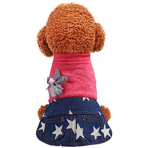 Kostüm Für Erwachsene Katze Funky - Fenverk Hundekleidung Katzenbekleidung Shirts FüR Hunde Katzen Haustier Warm Kleid Kariertes Welpen-KostüM Flanell Hundejacke Hunde, Hundemantel Gepolstert Puffer Weste Welpen(A Orange,XS)