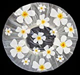 Duschhaube Farblos Shower Cap Blumen-Motiv