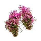 4pcs Paysage Modèle Sol Couvert De Fleurs Modèle Fuchsia