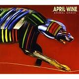 Animal grace (1984) [Vinyl LP]