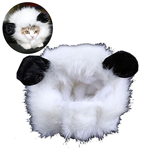 gossipboy Cute Pet Perücke Funny Cat Kitty Puppy Kostüm Kleine Katze Hund Halloween Hat Kleid bis Pet Keep Warm Cap mit Ohren, (Kostüme Kitty Cute)