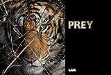 Image de Prey (English Edition)