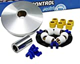 Variomatik POLINI Speed Control - PEUT Elystar 50 TSDI Typ:G1A