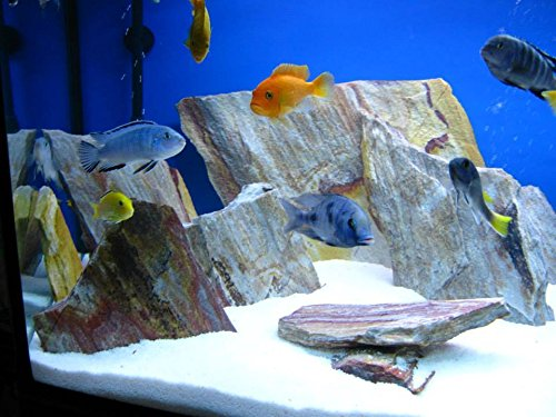 TM Aquatix Aquarium Sand White Fish Tank Gravel Natural Substrate (5kg, White 1-1,5mm) 1