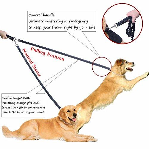 Hundeleine Jogging, PETBABA 86cm Lang Hände Frei Elastisch Reflektierend Nylon Training Hunde Leine mit Bauchgurt für Hunde Schwarz - 3