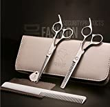 """SMITH CHU Ciseaux de Coiffure Professionnel 5.5"""" (14 cm) Ensemble Salon de Coiffeur + Coupe de Cheveux Amincissement + Peigne + Étui kit de Ciseaux Cheveux en Acier Inoxydable Argenté"""