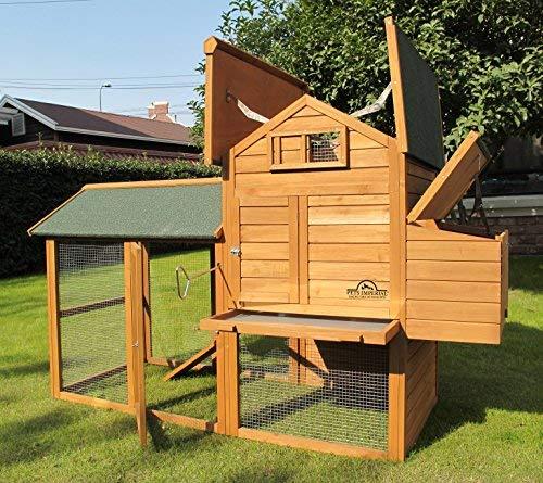 Pets Imperial® - groß Hühnerstall Kaiserbourne - 2 bis 4 Hühner je nach Größe - innovative Verriegelung - 3