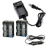 DSTE 2-pack Rechange Batterie et DC01E Voyage Chargeur pour Sony NP-FM500H...