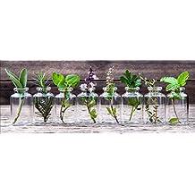 küchenbilder glas - artissimo GmbH - Suchergebnis auf Amazon.de für