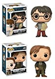 Funko POP! Harry Potter: Harry Potter w/ Marauders Map + Remus Lupin - Stylized Movie Vinyl Figure Set NEW