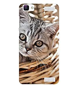 EPICCASE worderful kitty Mobile Back Case Cover For Vivo V1 Max (Designer Case)