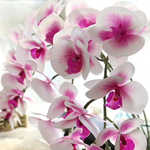 Longra Wohnaccessoires & Deko Kunstblumen & -pflanzen Künstliche Seide Fake Blumen Phalaenopsis Hochzeit Bouquet Party Home Decor Blumen (pink)