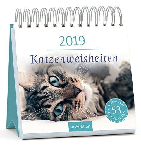 Katzenweisheiten 2019: Postkartenkalender