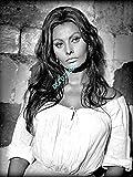 Photo de Sophia Loren�15x20cm�6x8inch
