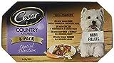 Cesar Bandejas de cocina para perros con diseño de comida en color gris