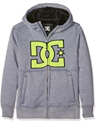DC Shoes Billions Youth - Sudadera con capucha tipo riding para niño, color gris, talla L