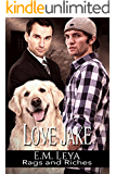 Love Jake (Rags and Riches Book 2) (English Edition)