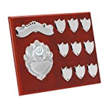 8 x 10 Annual Shield with FREE Engraving up to 30 Letters per plate, Center Disc can be changed to suit your sport or pastime TRS110 by Trophy - Trophy - amazon.co.uk