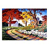 FBGood 5D Diamond Painting Embroidery Kits Full Drill Rhinestone Pasted Arts Craft DIY Diamond Painting Cross Stitch for Home Wall Decoration (30x40cm)