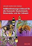 Feldbestimmungsschlüssel für die Hummeln Deutschlands, Österreichs und der Schweiz - Joseph Gokcezade, Barbara-Amina Gereben-Krenn, Johann Neumayer